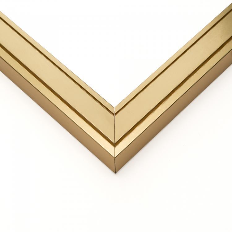 Fremont Gold